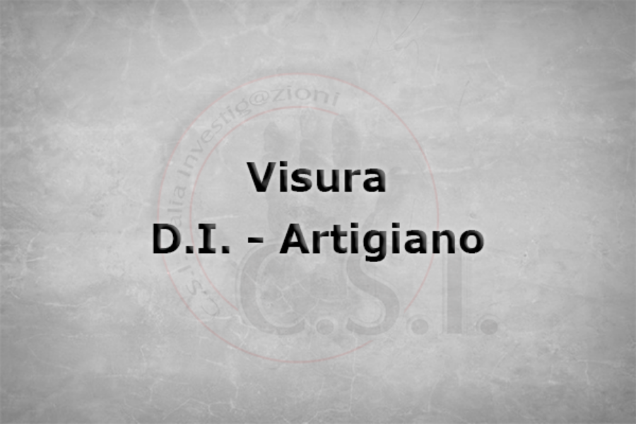 cod.-A5---Visure-Ditta--Individuale-e-Artigiani.